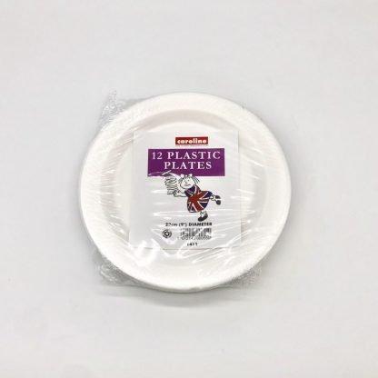 Foam Plates 9 inch 12 Pack